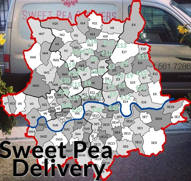 Flower delivery Sweet-pea-post-code-map